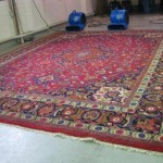 Rug cleaning care drying process