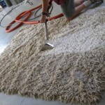 Rug cleaning process