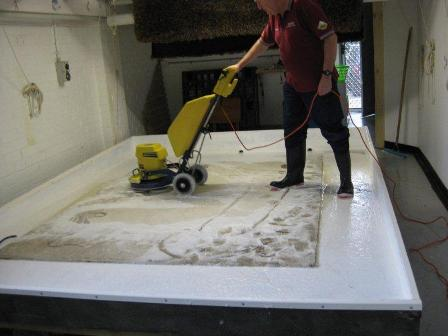 Rug Care business Booms