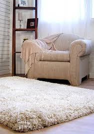 rug care