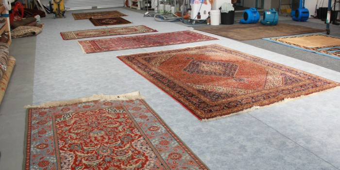 Devine Persian Rug Cleaning Specialists