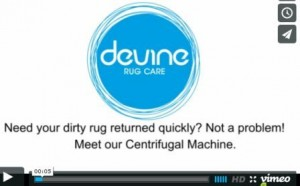 Centrifugal Machine with Devine Rug Clean