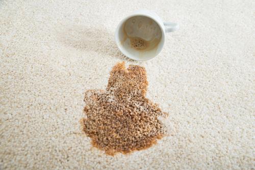 Blood, Coffee & Urine on your rug